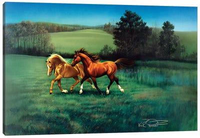 September Afternoon Canvas Art Print