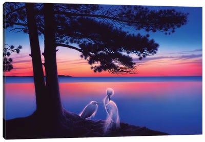 Serenity Canvas Art Print