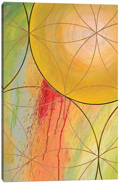 Downward Causation Canvas Art Print