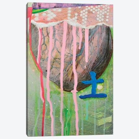 Earth Canvas Print #KRI11} by Kristin Reed Canvas Art