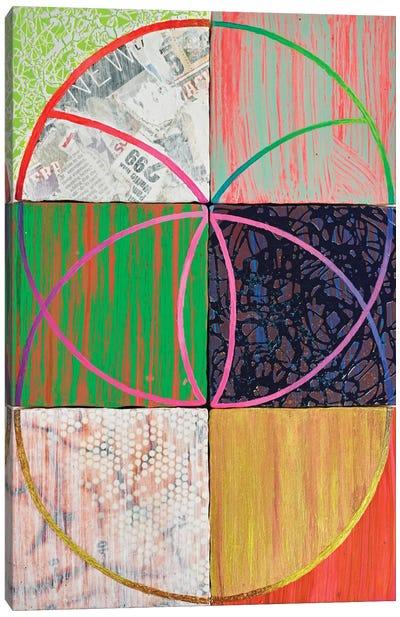 Junk DNA Canvas Art Print