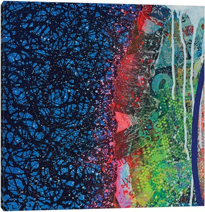 Crust Canvas Art Print