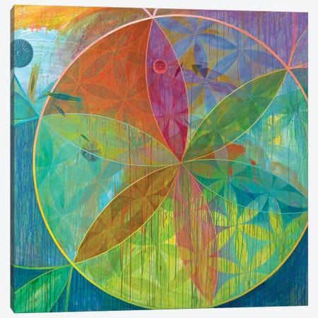 Unaccountable Galaxies Canvas Print #KRI44} by Kristin Reed Canvas Artwork