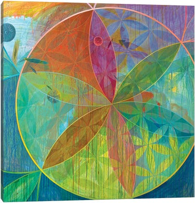 Unaccountable Galaxies Canvas Art Print