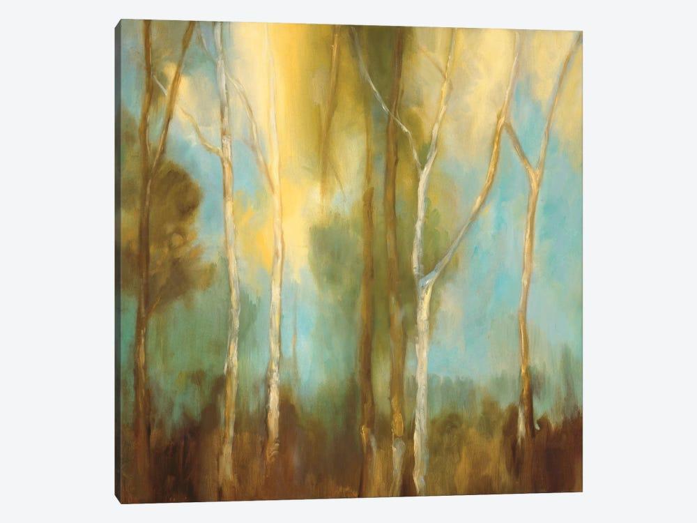 Bare Trees I by Kristi Mitchell 1-piece Canvas Art