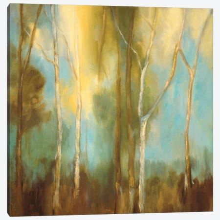 Bare Trees I Canvas Print #KRM1} by Kristi Mitchell Canvas Art Print