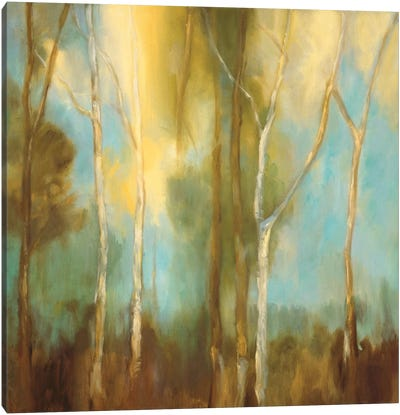 Bare Trees I Canvas Art Print
