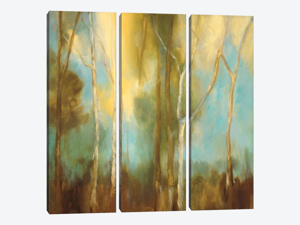 Bare Trees I by Kristi Mitchell 3-piece Canvas Artwork