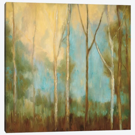 Bare Trees II Canvas Print #KRM2} by Kristi Mitchell Canvas Print