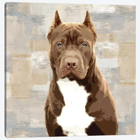 Pit Bull Canvas Print #KRO10} by Keri Rodgers Canvas Artwork
