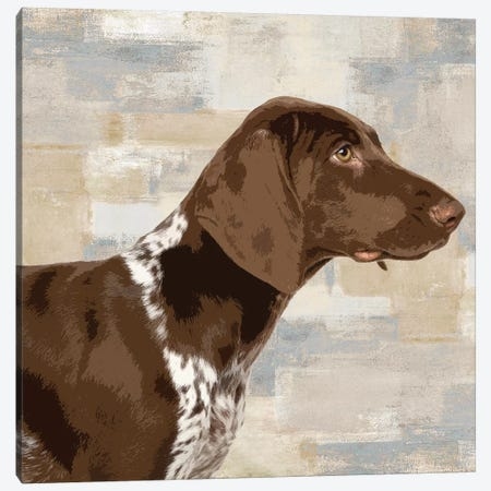 Pointer Canvas Print #KRO11} by Keri Rodgers Canvas Artwork