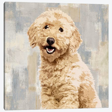 Poodle Canvas Print #KRO12} by Keri Rodgers Canvas Art