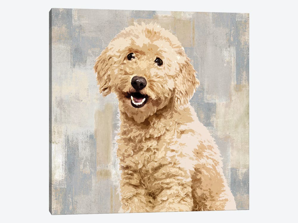 Poodle by Keri Rodgers 1-piece Art Print
