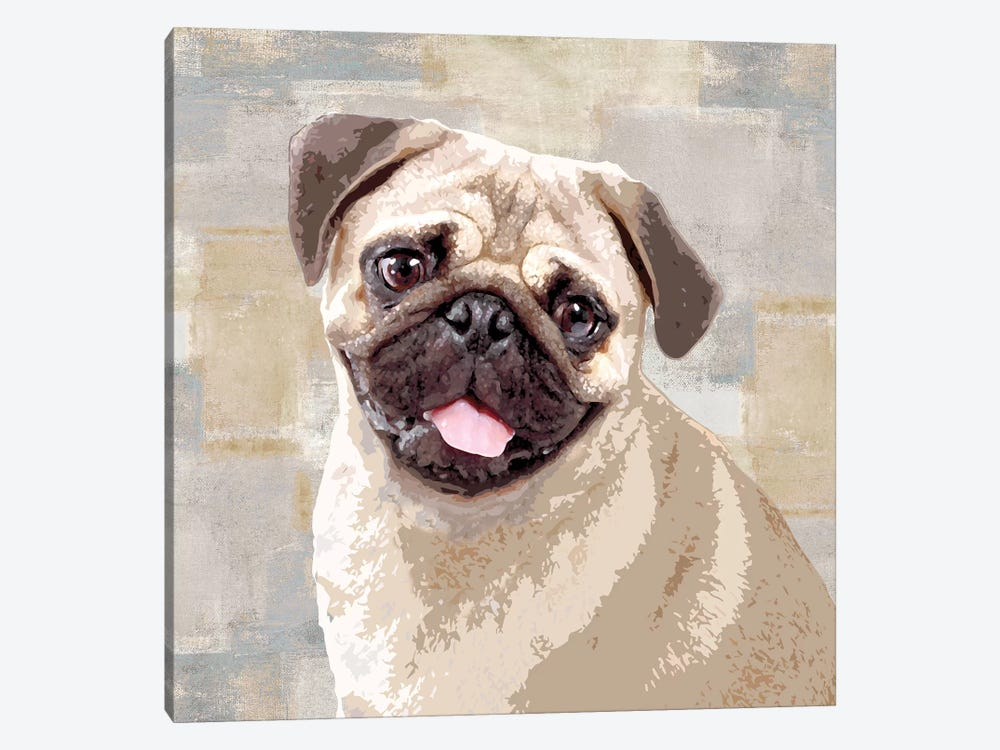 Pug by Keri Rodgers 1-piece Canvas Artwork