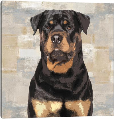 Rottweiler Canvas Art Print