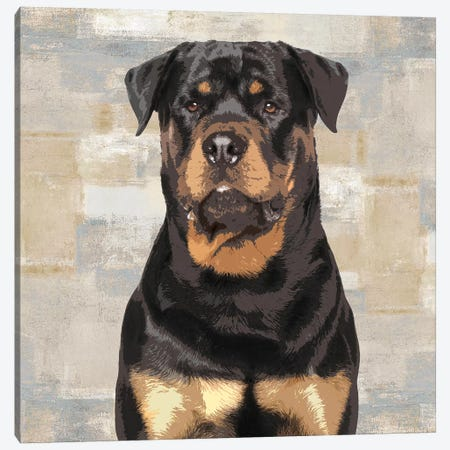 Rottweiler Canvas Print #KRO14} by Keri Rodgers Canvas Art Print