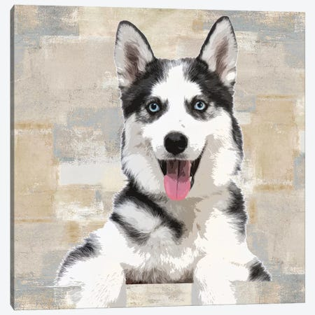 Siberian Husky Canvas Print #KRO15} by Keri Rodgers Canvas Art Print