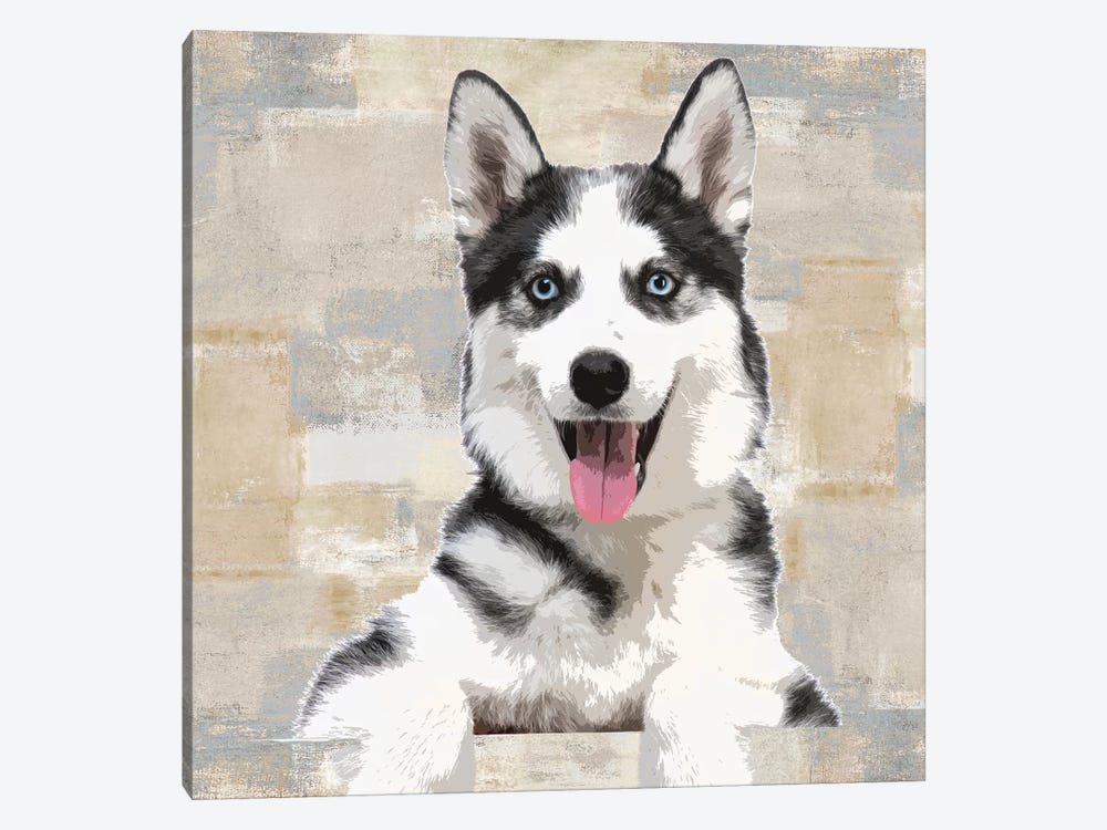 Siberian Husky by Keri Rodgers 1-piece Canvas Wall Art