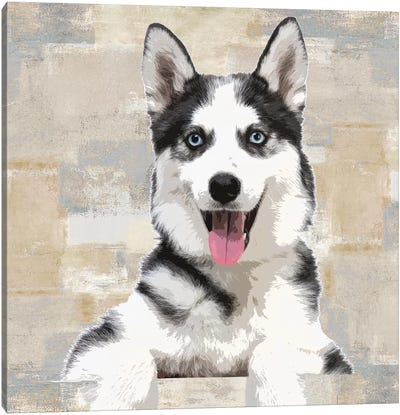 Siberian Husky Canvas Art Print