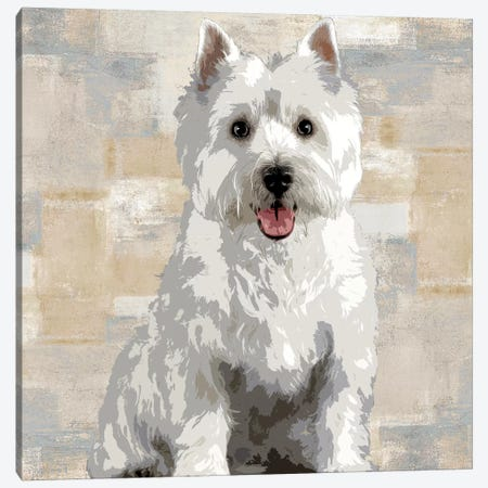 West Highland White Terrier Canvas Print #KRO16} by Keri Rodgers Canvas Art Print