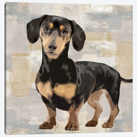 Dachshund Canvas Print #KRO4} by Keri Rodgers Canvas Wall Art