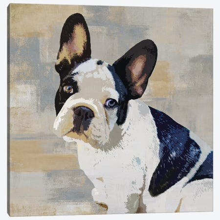French Bulldog Canvas Print #KRO5} by Keri Rodgers Canvas Artwork