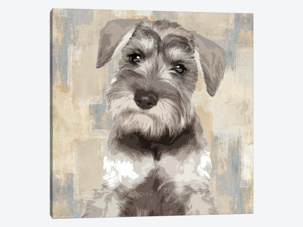 Miniature Schnauzer by Keri Rodgers 1-piece Canvas Wall Art