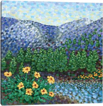 Mountain High Canvas Art Print