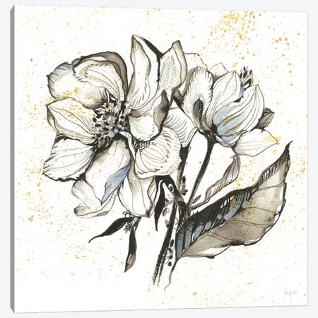 Elegance III Canvas Print #KRR30} by Kristy Rice Canvas Art Print
