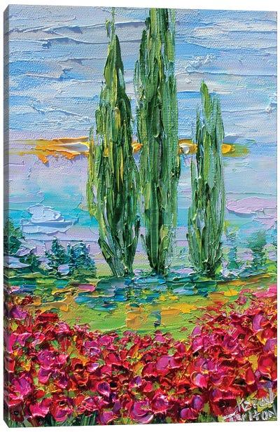 Provence Poppies Landscape Canvas Art Print