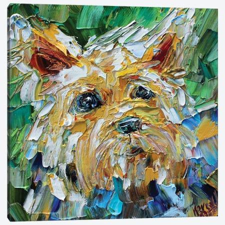 Yorkie Canvas Print #KRT175} by Karen Tarlton Canvas Art Print