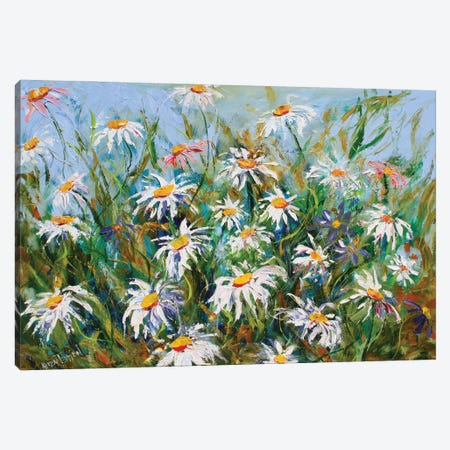 Daisies And Wildflowers Canvas Print #KRT57} by Karen Tarlton Canvas Wall Art