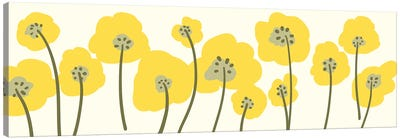Flowerbox V Canvas Art Print