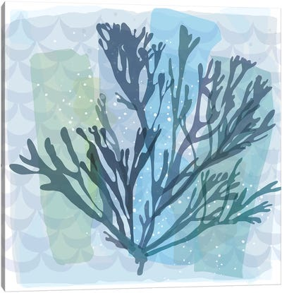 Barrier Reef Coral I Canvas Art Print