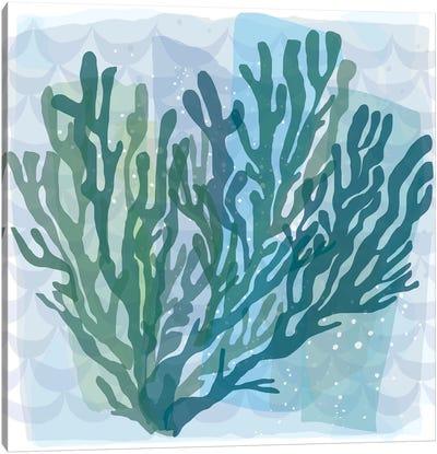 Barrier Reef Coral II Canvas Art Print
