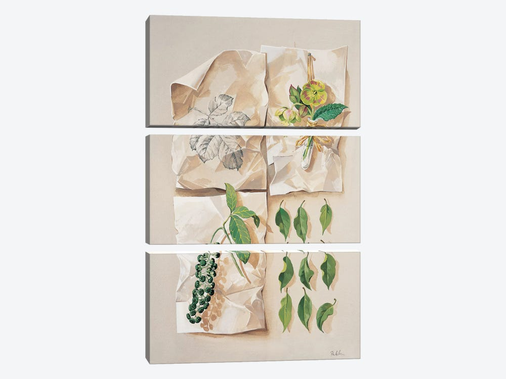Forest Collection I by Krysztov Kumorek 3-piece Canvas Artwork
