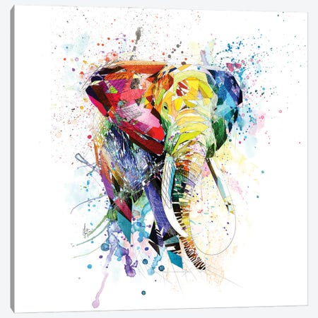 Elephant Canvas Print #KSK21} by Katia Skye Canvas Art