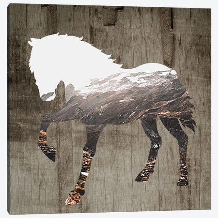 Wildhorse II Canvas Print #KSM17} by Karen Smith Canvas Artwork