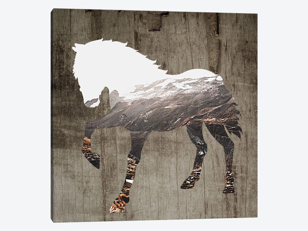 Wildhorse II by Karen Smith 1-piece Art Print