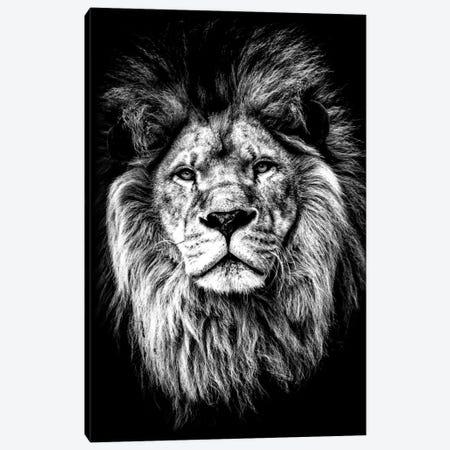 Beasty I Canvas Print #KSM18} by Karen Smith Canvas Art Print