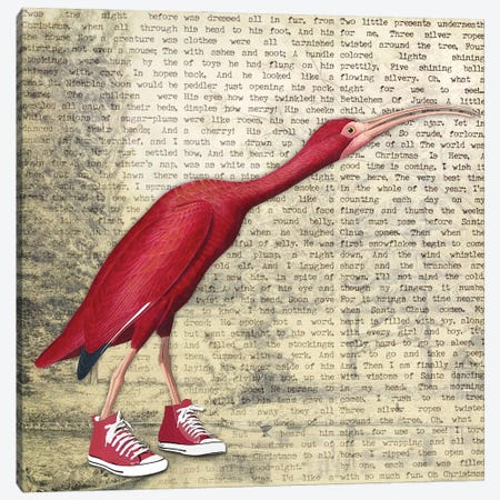 Birdshoes I Canvas Print #KSM30} by Karen Smith Canvas Art Print