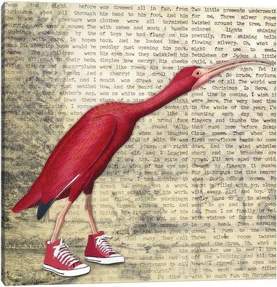 Birdshoes I Canvas Art Print