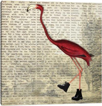 Birdshoes II Canvas Art Print