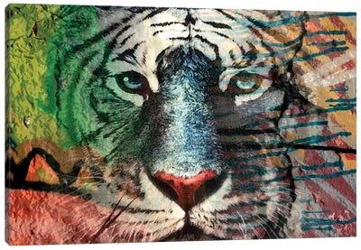 Painted Tiger I Canvas Art Print