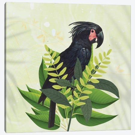 Parrot Haven I Canvas Print #KSM68} by Karen Smith Canvas Art