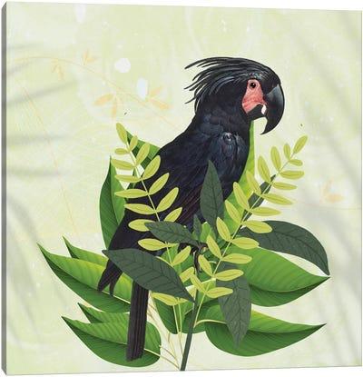 Parrot Haven I Canvas Art Print