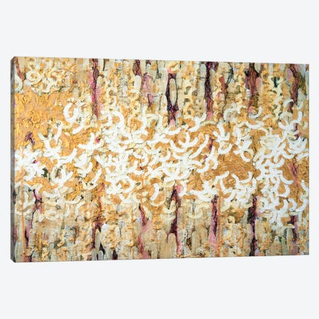 Nebulous In Gold Canvas Print #KSO27} by Kari Souders Canvas Print