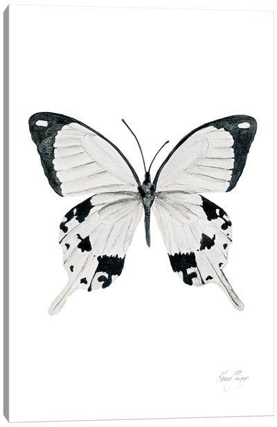 Butterfly In Black And White Canvas Art Print
