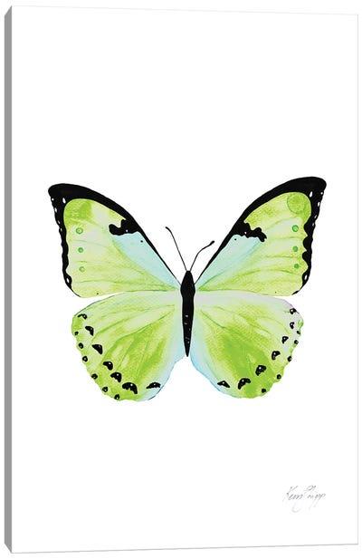 Butterfly In Green Canvas Art Print