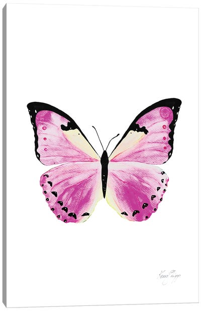 Butterfly In Pink Canvas Art Print